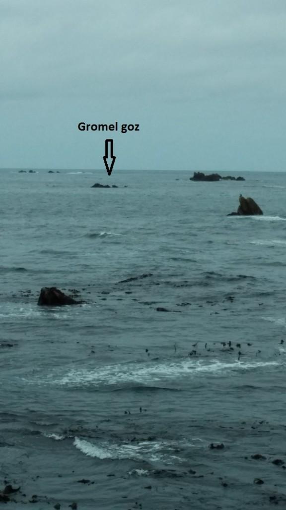 Gromel goz