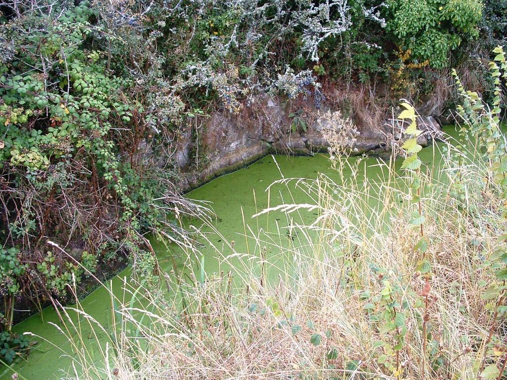Le canal à l'emplacement approximatif de l'ancien moulin.
